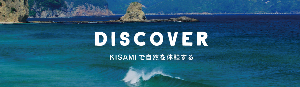 discover_banner
